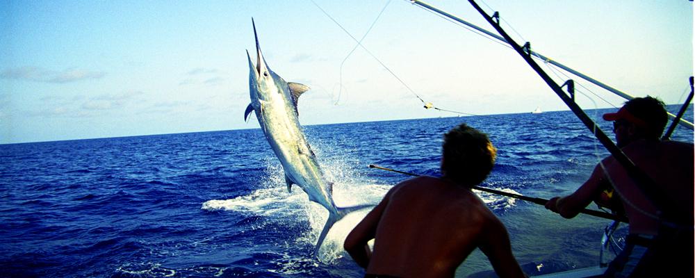 Pescando en Melaque
